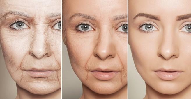 Alimentazione ipocalorica e invecchiamento