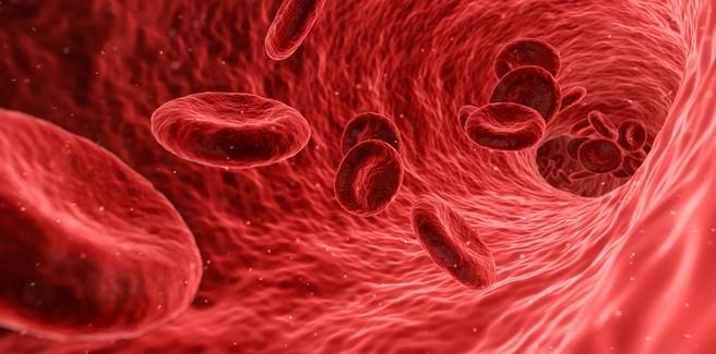 Esami del sangue: quali valori possono essere spia di un tumore?